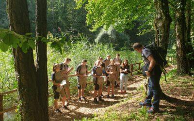 Waldexkursion der Lehrlinge